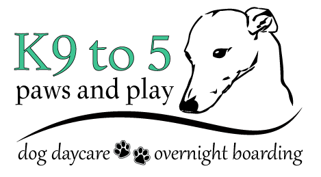 K9 to 5 Paws and Play Mobile Retina Logo